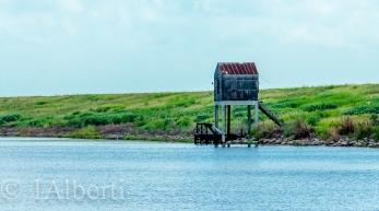 Torry Island