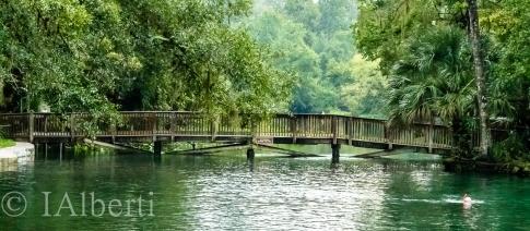 Wakiwa Springs, Orlando