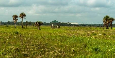 Pine Glades Reserve