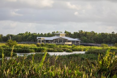 Green Cay Wetland