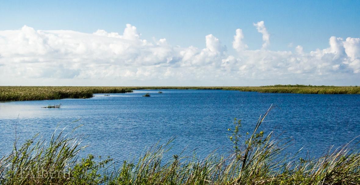 STA Wetlands